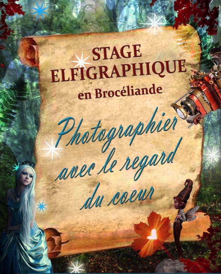 Stage Elfigraphique en Forêt de Brocéliande avec Klaod Roparz