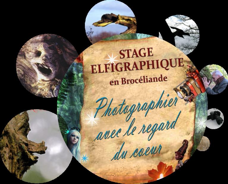Formations et Stages Photos de l'Elfigraphe