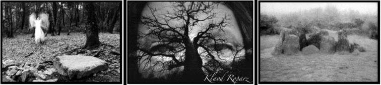 Exposition Les Secrets de Brocéliande de Klaod Roparz